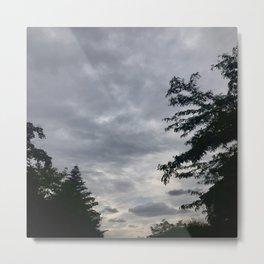 Trees meets the Sky Metal Print
