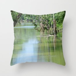 Backwoods Swamp Throw Pillow