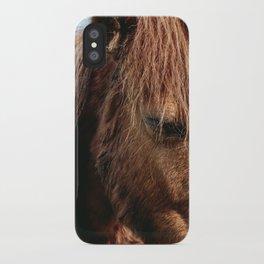 Brooding Pony iPhone Case