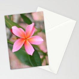 Blushing Plumeria Stationery Cards