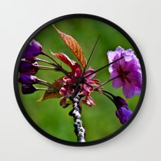 Pink Blossoms of Spring Wall Clock