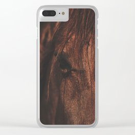 Horse - Sioux Clear iPhone Case