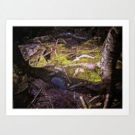 Roots of Love Art Print