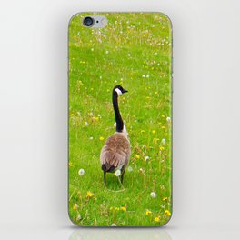 Goose in a field of flowers iPhone Skin