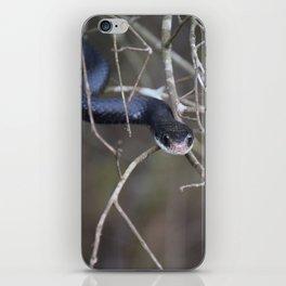 Sneaky Snake iPhone Skin