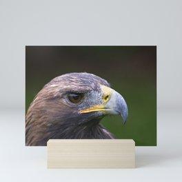 Adler Mini Art Print