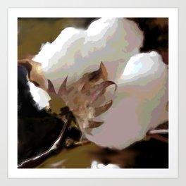 Cotton boll Art Print
