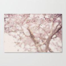 Pastel sakura Canvas Print