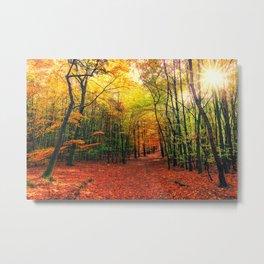 Serene Autumn Forest landscape Metal Print