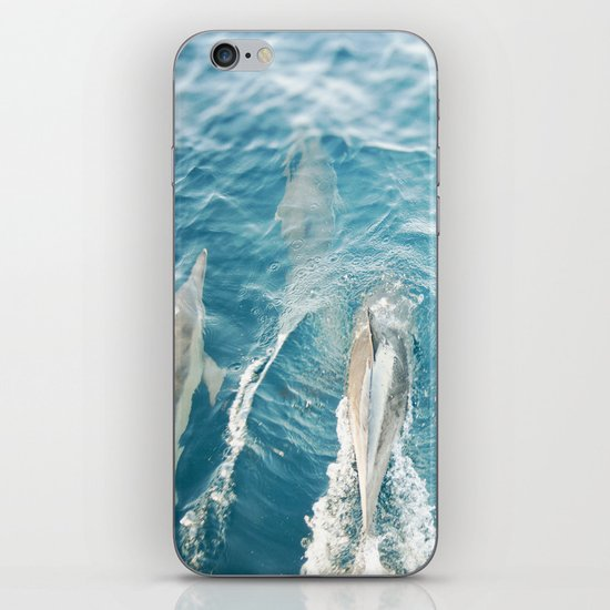 Dolphins Come Play  iPhone & iPod Skin