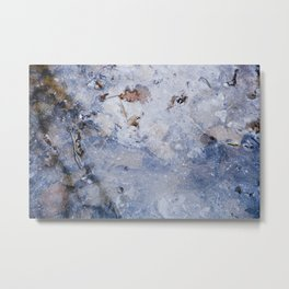 frozen lakes II Metal Print