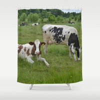 wisconsin Shower Curtains featuring Wisconsin Life by Teresa Young
