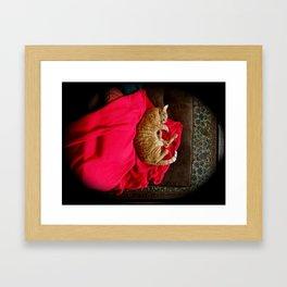 Sleeping Ninja Kitty with Red Cape Framed Art Print
