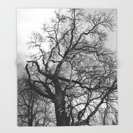 Old oak tree. Moscow district. Throw Blanket