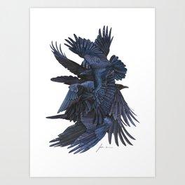 A conspiracy of ravens Art Print