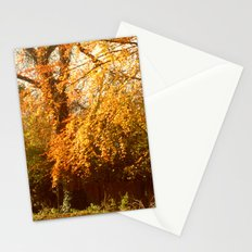 A Colourful Day. Stationery Cards
