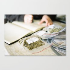 Citra Hops Canvas Print