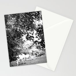 White Horse - Normandie Zen Stationery Cards