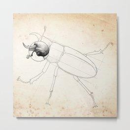 Beetle Technical Sketch: Reddish-Brown Stag Beetle Metal Print