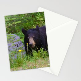 Black bear munches on some dandelions in Jasper National Park Stationery Cards