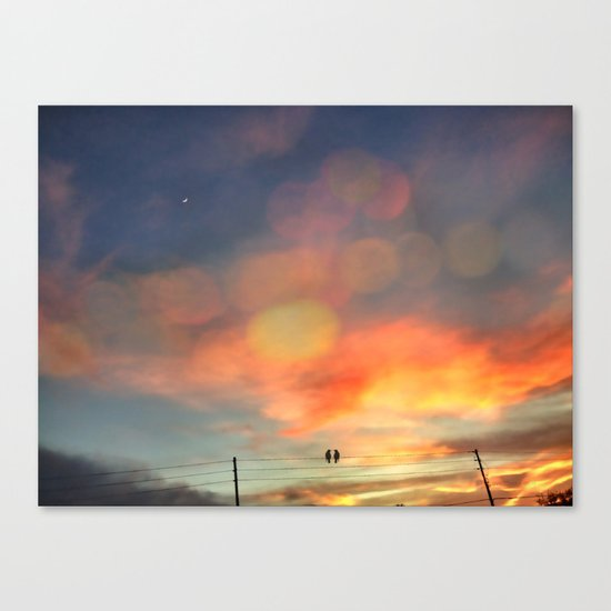 Love birds in the sunset Canvas Print
