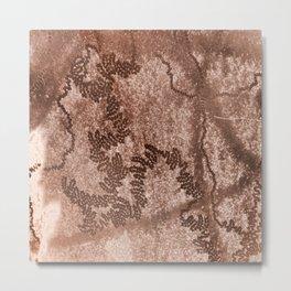 Snail trails on brown bark Metal Print