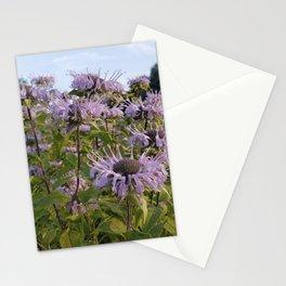 Prairie Bergamot Monarda Stationery Cards