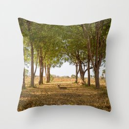 A Deer in the Forest Throw Pillow