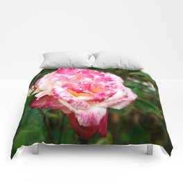 Tie-Dye Rose Comforters