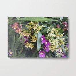 Longwood Gardens Orchid Extravaganza 67 Metal Print