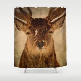 Deer In Headlights Shower Curtain