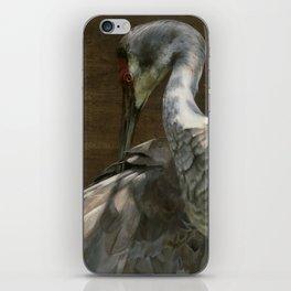Sandhill Crane iPhone Skin