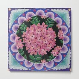 Pretty pink Pimelea flowers Metal Print