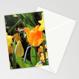 Little Bee In Flight Stationery Cards