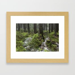 Mountains, forest, water. Framed Art Print