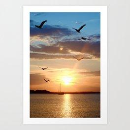 birds over the horizon Art Print