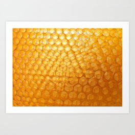 Honeycomb Morning Art Print