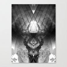 Eyedolatry Canvas Print