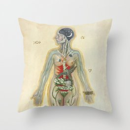 Dissecting A Witch Throw Pillow