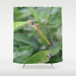 Green and Brown Dragonfly Holding On To Oleander Shower Curtain