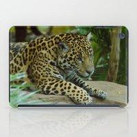 jaguar iPad Cases featuring  Jaguar  by Darren Wilkes Fine Art Images
