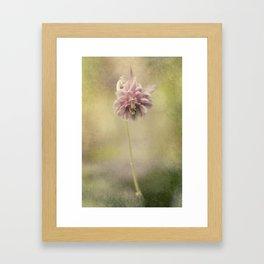 Columbine in LOVE Framed Art Print
