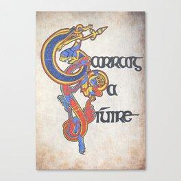 Carraig na Siuire Canvas Print