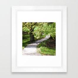 Green breath of spring Framed Art Print