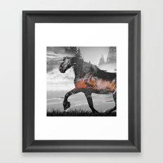 Black Horse Sunset Run Framed Art Print