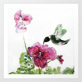 Razzberry Hummingbird watercolour by CheyAnne Sexton Art Print