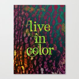 Live In Color Canvas Print