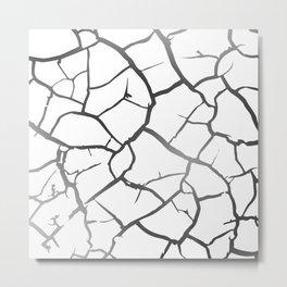 Dry earth Metal Print