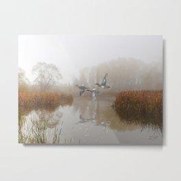 Cinnamon Teal Ducks in the Mist Metal Print