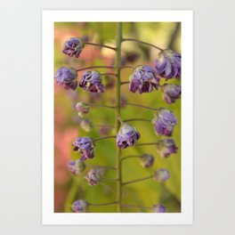 Purple Botanica Art Print